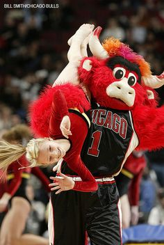 Benny steals a halftime performer. Performer refuses to stop smiling for her parents taking pictures. Chicago Bulls Team, Chicago Basketball, Bulls Basketball, Benny The Bull, Bull Images, Taking Pictures, Bull Bull, Nba, Sports Teams