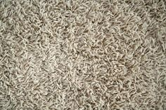 """Frieze """"Shag"""" Carpet Overview and Review"""
