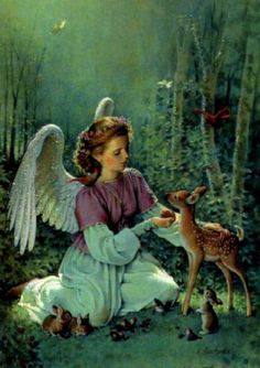 Angels ~~ Precious angel feeding Bambi and surrounded by tiny creatures.