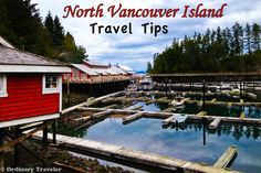 Most people have heard of Victoria, but have you heard of Telegraph Cove or Port Hardy? Find out what to do and where to stay on North Vancouver Island. The Places Youll Go, Great Places, Places To Go, Travel Essentials, Travel Tips, North Vancouver, Romantic Places, Adventure Is Out There, Amigurumi