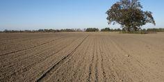 2000m² Weltacker: Mutterboden (Teil 3)