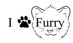 I  furries