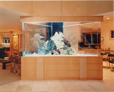 i want a custom aquarium in the middle of my home!