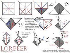 Lorbeer