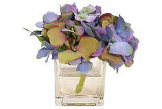Hydrangea in Glass Cube, Green/Purple on OneKingsLane.com