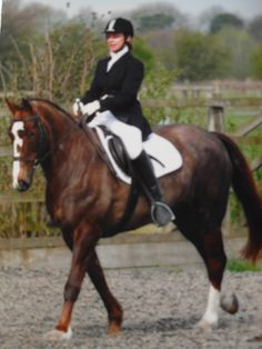 #www.jonesdressage.co.uk horse riding in kent