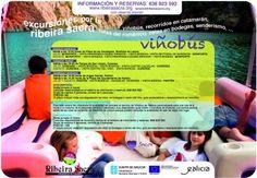 Rutas enoturísticas del Viñobus (verano 2012)