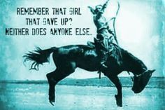 equestrian quotes | Never give up. | Horse quotes
