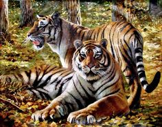 (North Korea) Tigers by Oh Young-u (1955-     ).