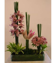 Ignez Ferraz » artigos » flower designers