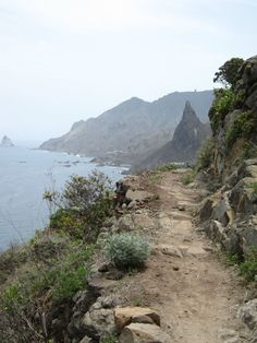 "From ""Tenerife hiking trails"" story by Lilliam Menendez  on Storify — http://storify.com/LilliamMdez/tenerife-hiking-trails"