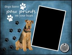 8x6 Airedale Terrier Paw Prints Framed by SapphireCustomPhotos, $8.00