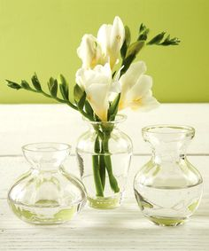 Fluted Trio Bud Vases In Gift Box - Set of 3