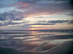Sapelo Island - by Bonnie Simons