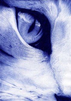 cat eye by Jaime de la Torre (de la torre art) with ballpoint pen