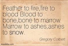 Image result for Feather to fire,fire to blood Blood to bone,bone to marrow Marrow to ashes,ashes to snow""