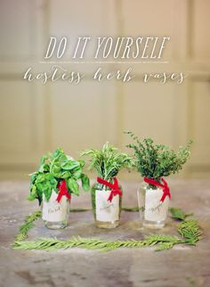SMP at Home: DIY Hostess Herb Vases  Read more - http://www.stylemepretty.com/living/2012/12/22/smp-at-home-diy-hostess-herb-vases/
