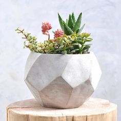 geometric concrete pot by henry's future | notonthehighstreet.com