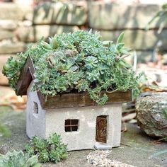 Living Roof Tabby Cottage ~  Fairies, keeping it green!