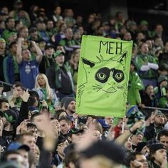 grumpy cat  lol, i love my #seattle #sounders