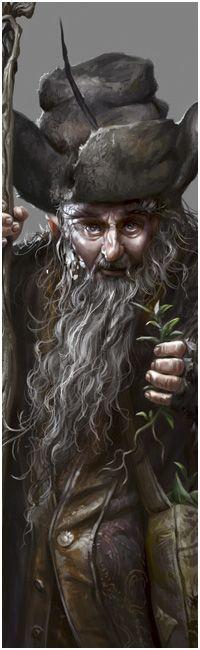 The Art of Daarken Tolkien Hobbit, Lotr, The Hobbit, Character Concept, Concept Art, Character Design, Radagast The Brown, Gandalf, 2d Art