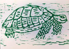 Schildpad-2F