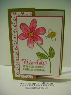 Stampin' Studio: Modified Front Panel Card