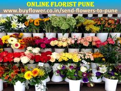 Pune Online Florist Is Help to Send Flowers And Gifts To Pune And All Over India. If You You Want To Send Flowers And Gifts To Your Friends And Your Family Members Then You Come My Website http://puneonlinefloristworld.tumblr.com/