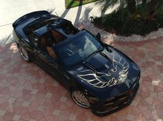 OMG IM IN LOVE!!!!!  TRANS AM SPECIALTIES OF FLORIDA