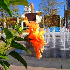 Cincinnati | Fountains at #Cincinnati Riverfront Park