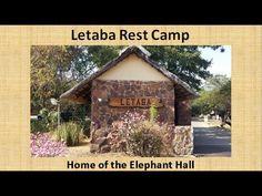 Letaba Rest Camp, Kruger National Park, South Africa - YouTube Kruger National Park, Game Reserve, South Africa, Safari, Wildlife, Rest, Camping, World, House Styles