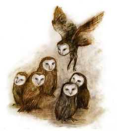 Enchanting owls by Beatriz Martin