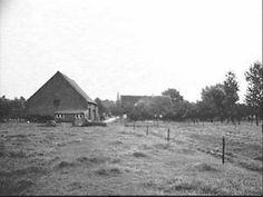 De Kleine Haag