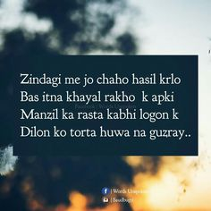 361 Best Shayari ! images in 2018 | Quotes, Manager quotes, Quotations