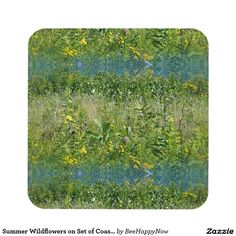Summer Wildflowers on Set of Coasters (6)