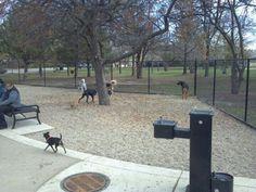 Norwood Dog Park in Chicago
