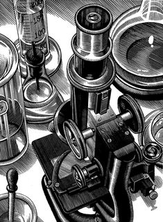 SCRATCHBOARD by Douglas Smith, via Behance _______________________________ Love the scratchboard, the time alone to get this detailed is amazing in itself. Ink Illustrations, Illustration Art, Douglas Smith, Scratchboard Art, Engraving Art, Scratch Art, Still Life Drawing, Guache, Art Techniques