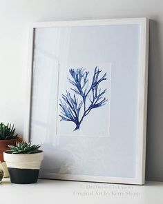 Seaweed Wall Art Print in Denim Blue - Blue Coral Art - Blue Seaweed Print - Sea Life Art Print - Coral Art Print - Seaweed V in Denim Watercolor Drawing, Watercolor Illustration, Watercolor Paintings, Original Paintings, Original Art, Arte Coral, Coral Art, Coral Blue, Chinese Painting