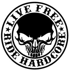 Decals - Stickers - Vinyl Decals - Car Decals for Windows, Vehicle Windows, Vehicle Body Surfaces, Motorcycles or just about any surface! Harley Davidson Stickers, Harley Davidson Logo, Window Decals, Car Decals, Vinyl Decals, Funny Decals, Window Wall, Motorcycle Decals, Motorcycle Logo