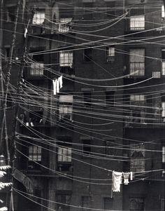 Clotheslines - Ralph Steiner