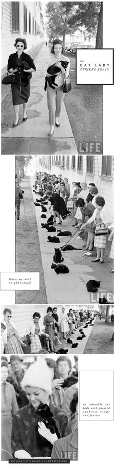 Cat Ladies Know a Thing or Two About Style     via www.StyleMachineBlog.com #CatLady #Chic