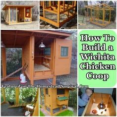 Wichita Chicken Coop