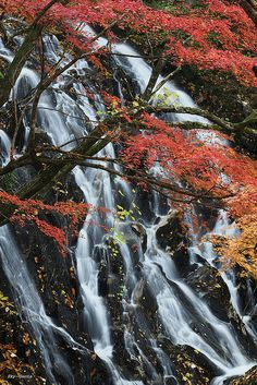 ✯ Sohmen Falls - Japan