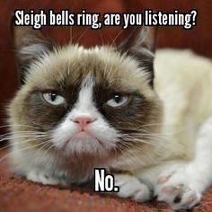 Grumpy Cat Christmas Humor -
