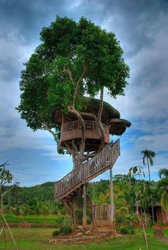 Tree Home Pictures! This is a collection of Tree house pictures that are worthy of living in. A Dreamers Dream! Magical Tree, Cool Tree Houses, Houses Houses, Tiny Houses, Tree House Designs, Home Pictures, In The Tree, Big Tree, Beautiful Places