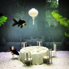 Fishtank in Hôtel Droog #Amsterdam - Instagram photo by @Marjan Ippel (Marjan Ippel) | Statigram