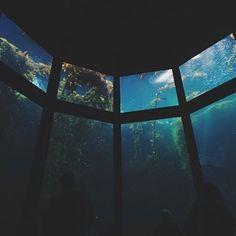 Deep sea thinking