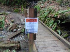 """""""TWIN FALLS HIKE"""" -- NORTH BEND - Twin Falls Hike — Olallie State Park.  FAMILY FRIENDLY HIKE. 2.0 MILES Roundtrip. 500 FOOT elevation gain.  Discover Pass required."""