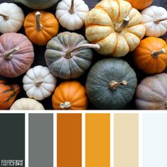 Color Palette: Shades of grays and oranges. If you like our color inspiration, sign up for our monthly trend letter here! http://patternpod.us4.list-manage.com/subscribe?u=524b0f0b9b67105d05d0db16a&id=f8d394f1bb&utm_content=buffer847d9&utm_medium=social&utm_source=pinterest.com&utm_campaign=buffer