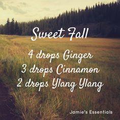 10 Essential Oil Diffuser Blends – Jamie's Essentials